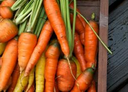 Receitas caseiras veganas para cabelos naturais – crespos e cacheados
