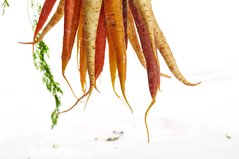 crescimento capilar saudável - 7 dicas essenciais para fazer o cabelo crescer mais rápido de forma segura. Na foto, cenouras e batatas são posicionadas de modo que lembram uma raiz. Texto reforça importância da alimentação equilibrada e de cuidar da saúde do couro cabeludo.