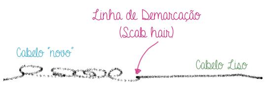 linha-de-demarcação-entre-scab-hair-e-cabelo-novo
